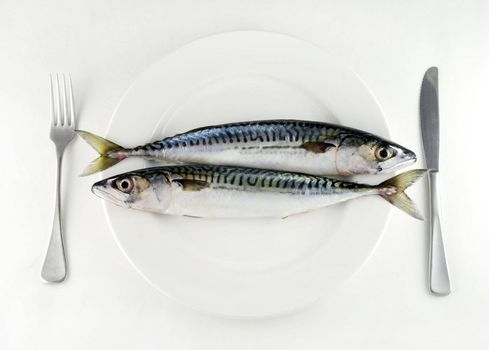 two mackerel on a white plate with knife and fork