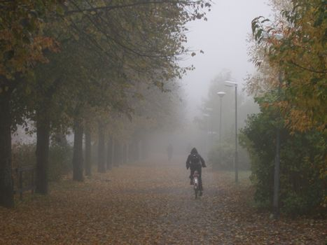 Bicykle early moring in november