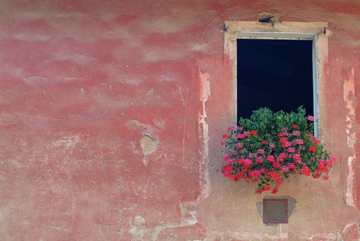 open window in red wall with flowers