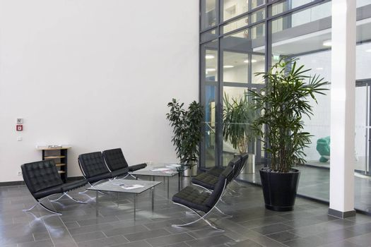 Lobby of a modern office building with chairs of black leather, tables of glass and plants