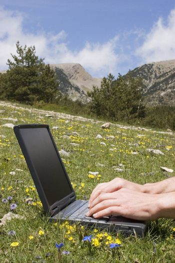 Male hands typing on a laptop in a meadow in the mountains