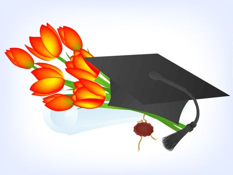 Education theme: tulips, graduate hat and diploma