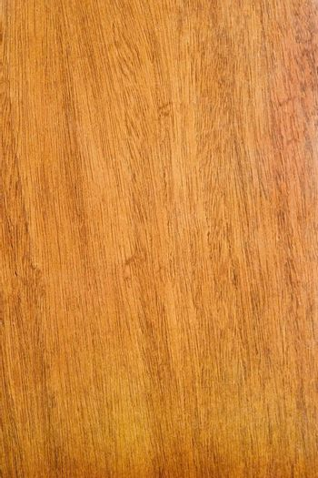 Wood texture background image