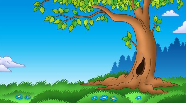 Leafy tree in grassy landscape