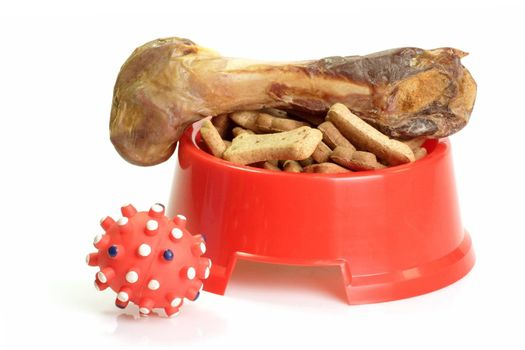 Red bowl with dog food and dog toy