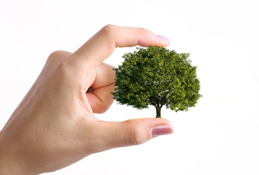 the nature in our hands