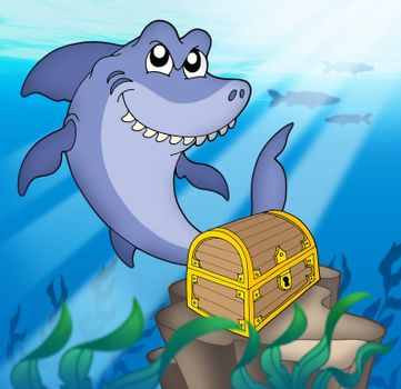 Shark with tresure chest - color illustration.