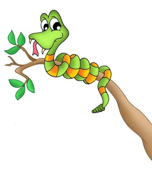 Snake on branch - color illustration.