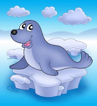 Cute seal on iceberg - color illustration.