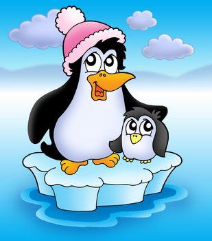 Two penguins on iceberg - color illustration.