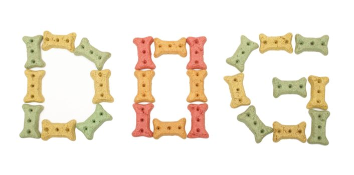 The word dog is spelt using treats in the shape of a bone.