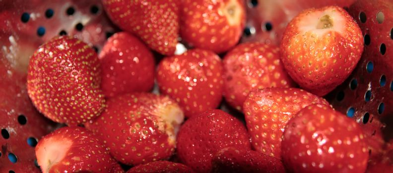 juicy ripe red strawberries in a silver colander