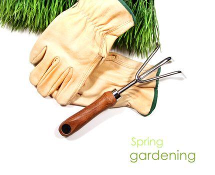 Green grass, gloves, and garden tool