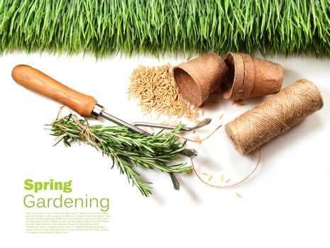 Grass, seeds, cord and peat pots for spring