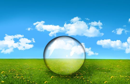 Glass sphere in a field of tall grass