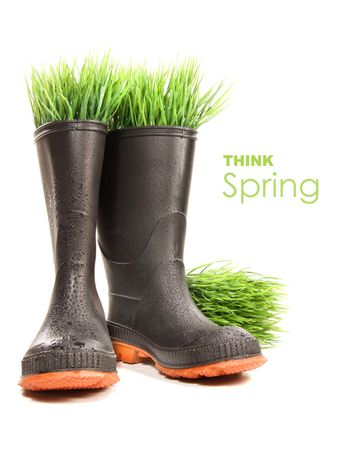 Rubber boots with grass on white