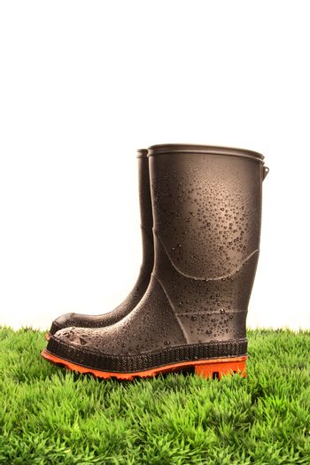 Pair of black rubber boots on green grass