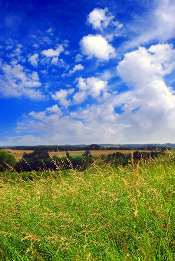 Summer rural landscape with cloudy blue sky