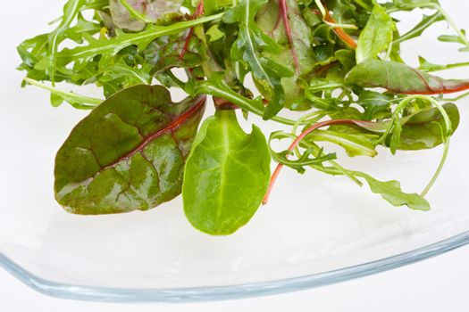 closeup of salad leaves on a glassy plate