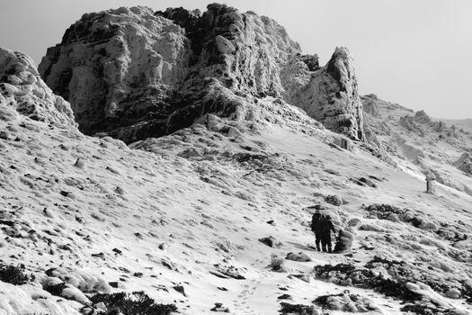 mountain 8