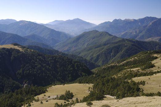 Grass and Alpine