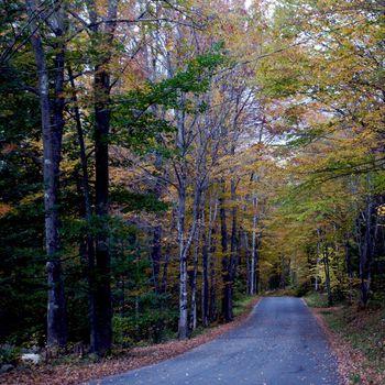 Small town of Ludlow Vermont during foliage season