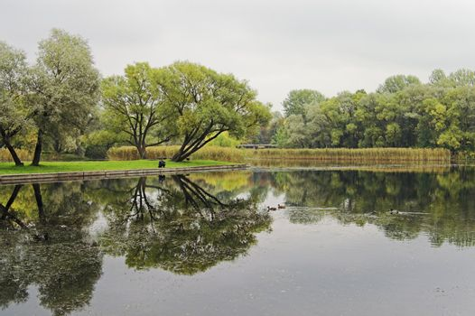 A lake in an early autumn park on a cloudy and foggy day, with a fisher-man and ducks.