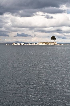A single tree on and rocky island on Lake Titicaca.