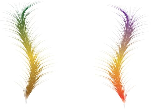Two Feather for you