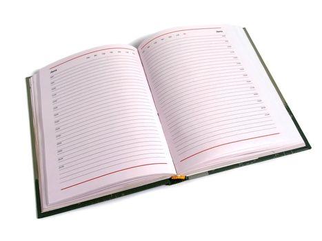 Organizer - daily planner over white