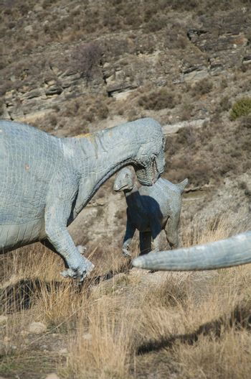 dinosaur fighting