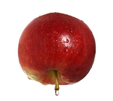red apple with drop of water on the stem