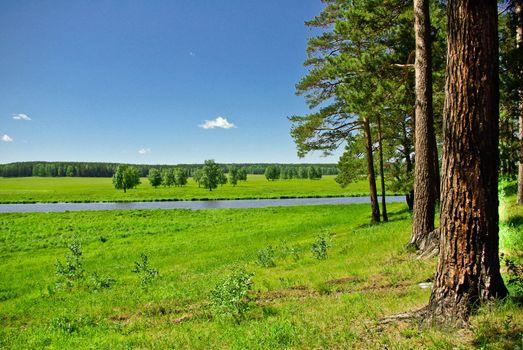Summer landscape horizontal