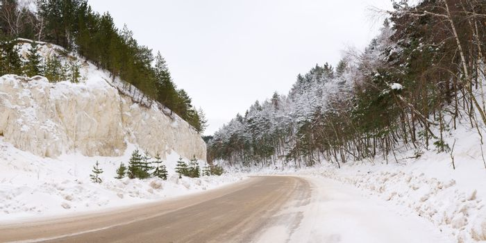 Winter road through the high pine forest