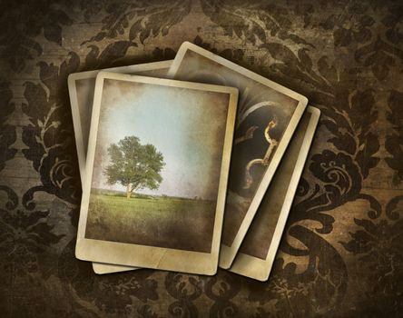 Vintage photos on dark damask background