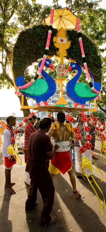 thaipusam ritual of carrying kavdi for one s belief