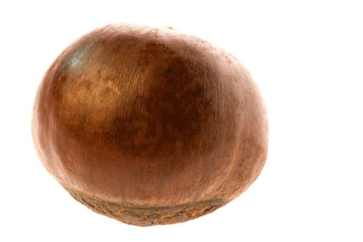 Isolated macro image of a roasted chestnut.