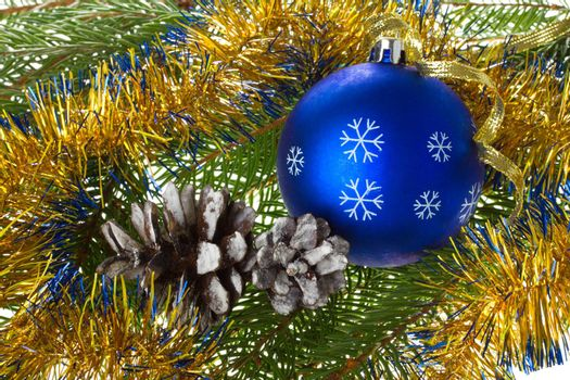 close-up blue ball and cones on fir tree branches