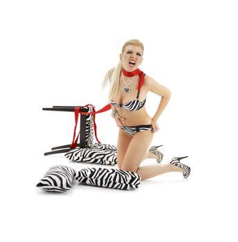 zebra scream