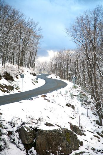 curves on winter road
