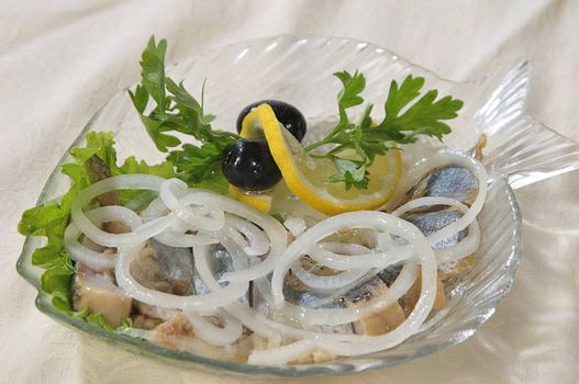 pieces of herring under a bow in oil, decorated greenery and olives