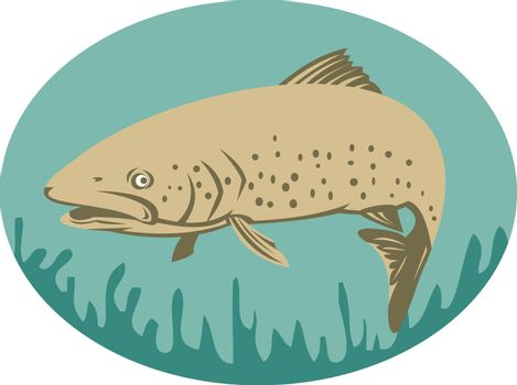 Spotted or speckled Trout swimming