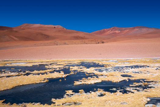 frozen lagoon Quepiaco in Atacama desert, Chile