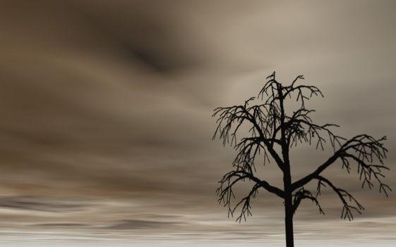 dark sky and lonely tree