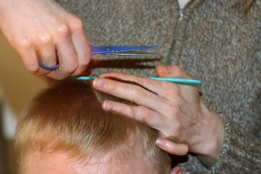 Hair cutting. Hair stylist at work with scissors