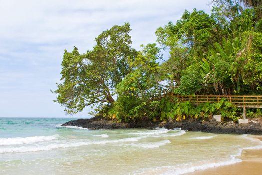 Bocas del Toro Beachscape