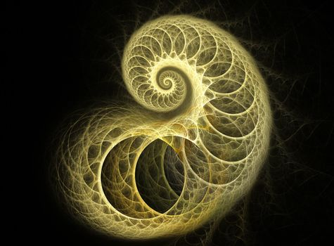 Coiled Cocoon Fractal