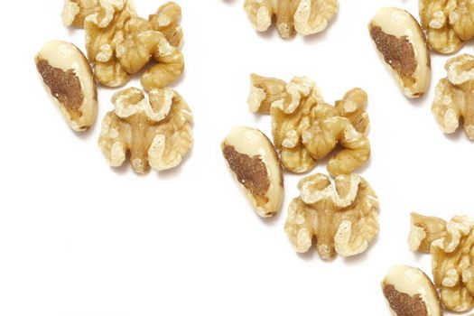 walnuts and brazil nuts isolated on white