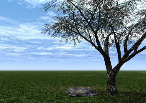 a tree and a stone on a green field and blue sky