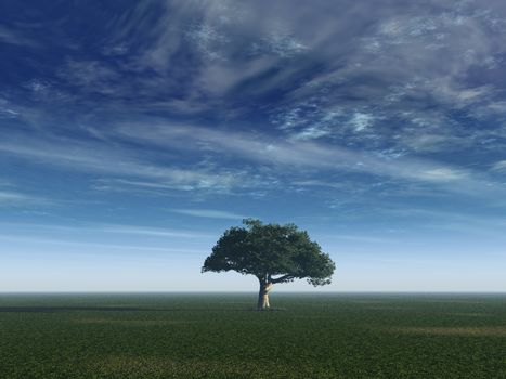 lonely tree on a field with blue sky - 3d illustration
